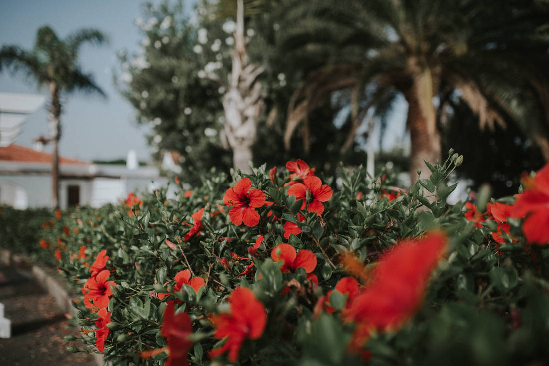photography_ss_grancanaria_031