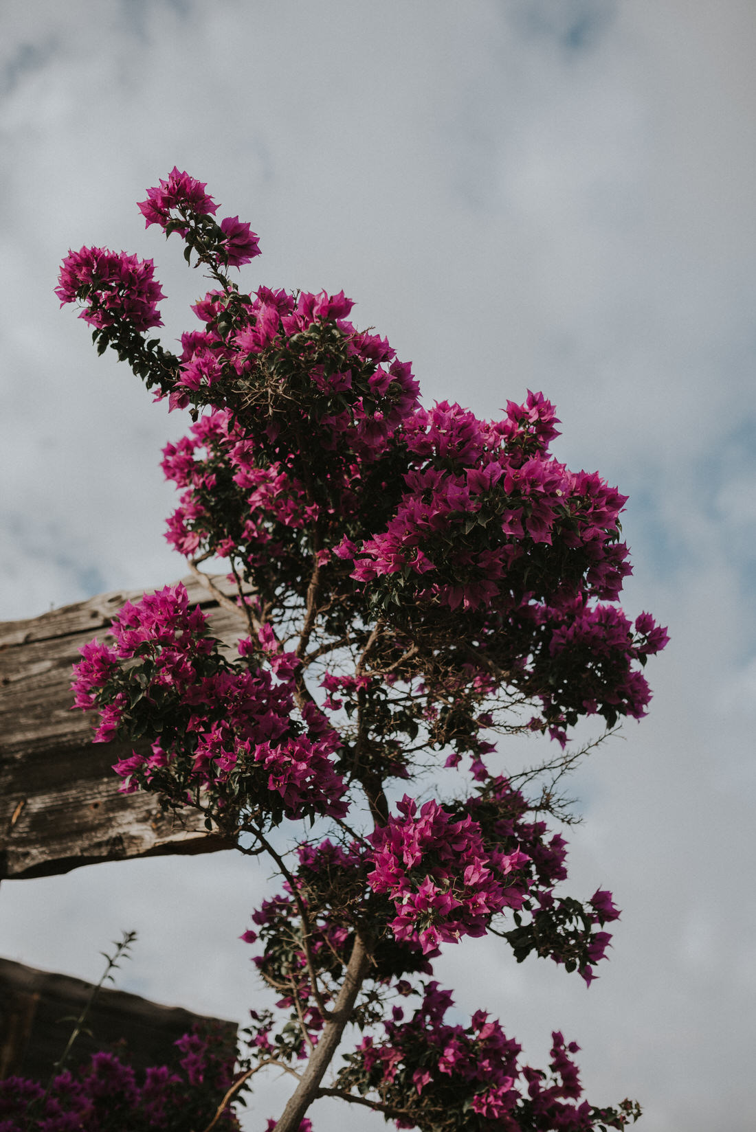 photography_ss_grancanaria_302