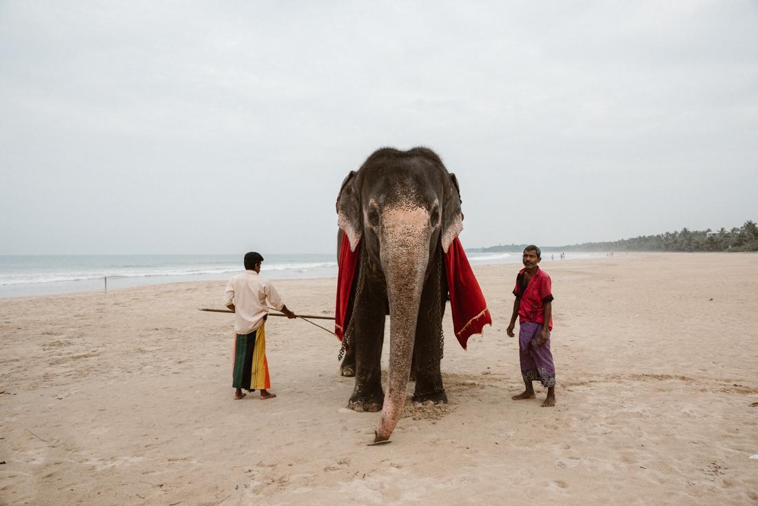 PhotographyS&S_SriLanka_Shooting_ (1 von 109)
